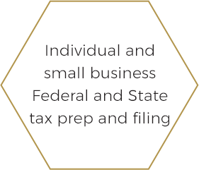 Individual and Business Tax Preparation/e-Filing for Federal and State returns